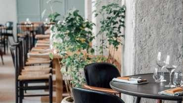 31 Great Copenhagen Wine Restaurants Star Wine List
